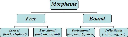 Morphemes in English - a chart