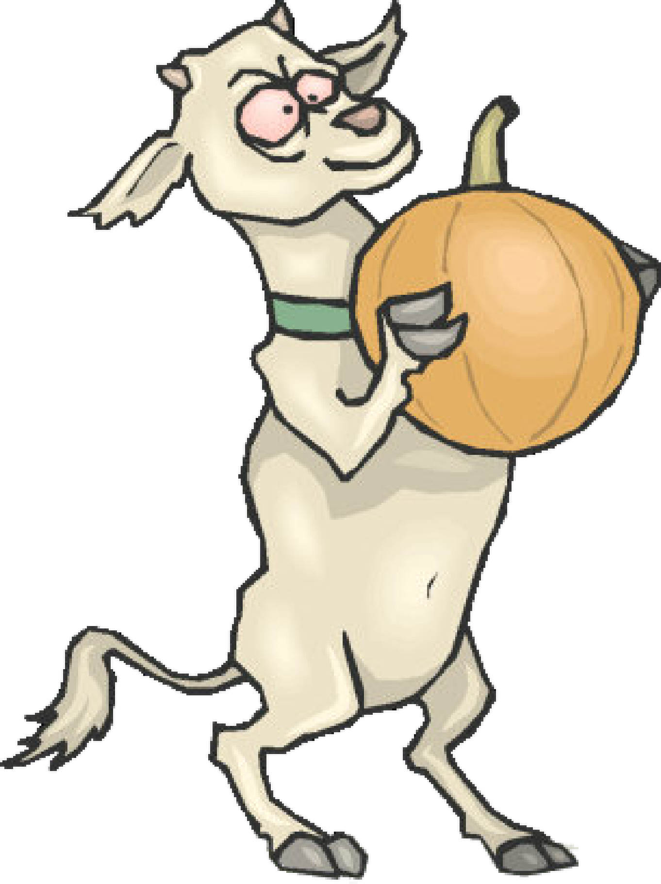 Goat with a melon